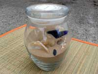 Wedding gift in a jar... a beach scene to honor our honeymoon in Kauai...