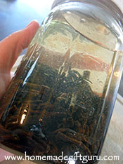 Shake the jar to start the vanilla bean infusion process...