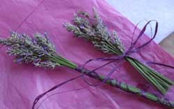 Lavender wands make a simple flower gift whether you have fresh or dried lavender...
