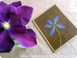 Dried pressed flower crafts...