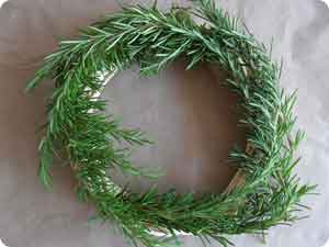 Start by covering the wreath base with rosemary...