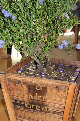 Homemade Birthday Gifts For Mom Personalized Potted Lilac Gift