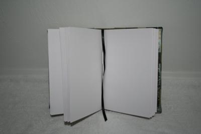 The paper I used was Carson drawing paper and a waxed thread for binding.  I even added a bookmark :)